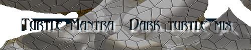 Turtle Mantra - Dark Turtle Mix